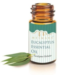 10 Best Brands of Eucalyptus Oil